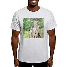 Cheetah004 T-Shirt