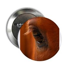 Eye of the Horse Button