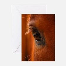 Eye of the Horse Greeting Cards (Pk of 10)