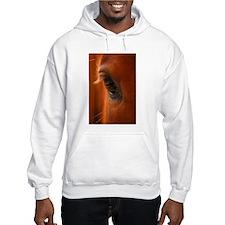 Eye of the Horse Hoodie