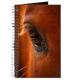 Arabian horse Journals & Spiral Notebooks