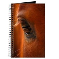 Eye of the Horse Journal
