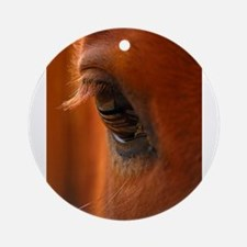 Eye of the Horse Ornament (Round)