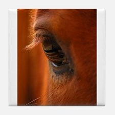 Eye of the Horse Tile Coaster