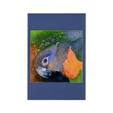 Red-Bellied Parrot Rectangle Magnet