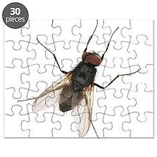 Unique Bugs Puzzle