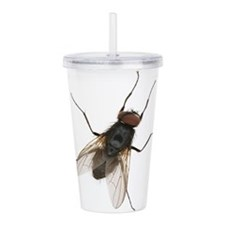Cute Fly Acrylic Double-wall Tumbler