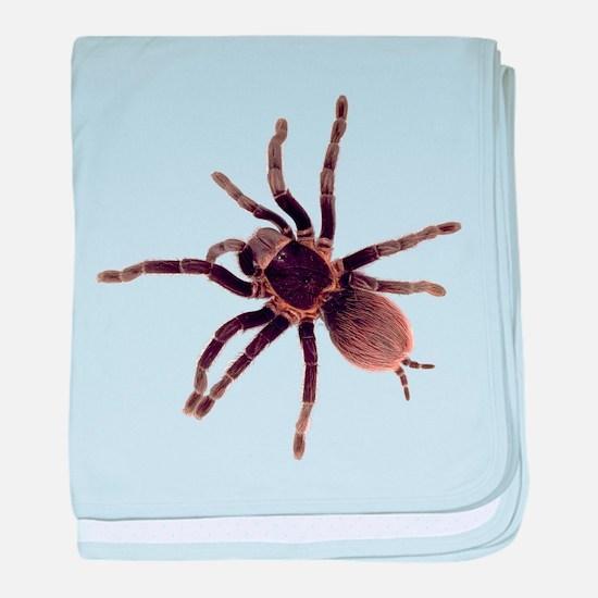 Unique Spider baby blanket