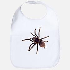 Cute Spiders Bib