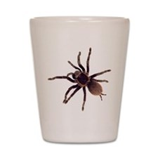Unique Bug Shot Glass