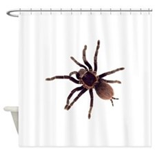 Cute Bugs Shower Curtain