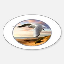 gull on the wing over beach Decal