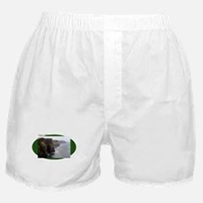 Cliffs of Moher on green oval Boxer Shorts