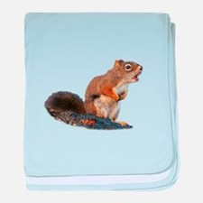 Cute Squirrel lover baby blanket