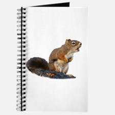 Cute Wildlife photography Journal