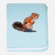 Cute Squirrel funny baby blanket