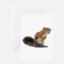 Singing Squirrel Greeting Cards