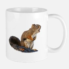 Singing Squirrel Mugs