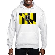 Baltimore Flag Hoodie