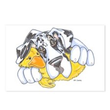NH Ducky Postcards (Package of 8)