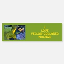 Yellow Collared Macaw Bumper Bumper Bumper Sticker