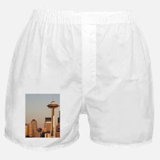 View from Kerry Park skyline with Spa Boxer Shorts