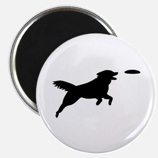 "Dog Agility 2.25"" Magnet (10 pack)"