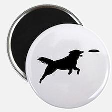 "Dog Agility 2.25"" Magnet (100 pack)"
