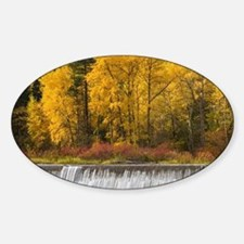 Tumwater Canyon; Autumn color along Decal