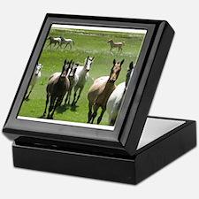 Cute Appaloosa horses Keepsake Box