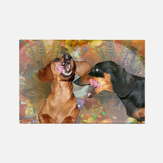 Candy Stars Dachshund Dogs Rectangle Magnet