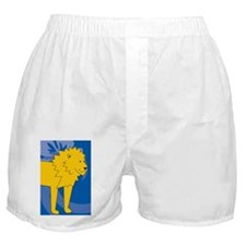 Funny Lion king ticket Boxer Shorts