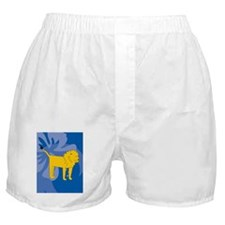 Cool Lion king ticket Boxer Shorts
