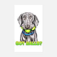 Weimaraner Got Balls? Sticker (Rectangle)