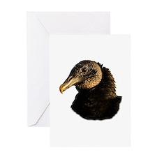 black vulture Greeting Cards