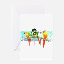 Green Cheek Conures Greeting Cards