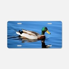 Mallard Duck Aluminum License Plate