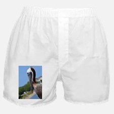 Pelican Smiling Boxer Shorts