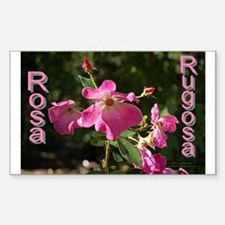 Rosa Rugosa Rectangle Decal