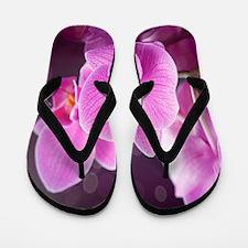 Pink Orchids Flip Flops