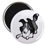 Collie Play Bows Magnet