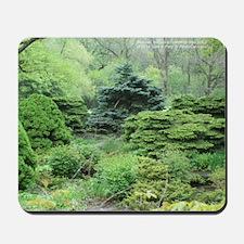 Vision Of Green #1 Mousepad