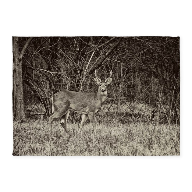 Whitetail Buck 5'x7'Area Rug By REDTRUCKPHOTOS