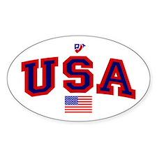USA Flag Oval Decal