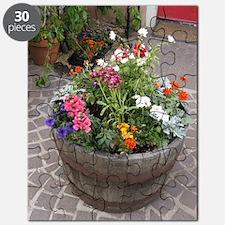 Courtyard Color Puzzle