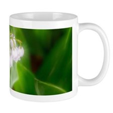 Lily of the Valley Mugs