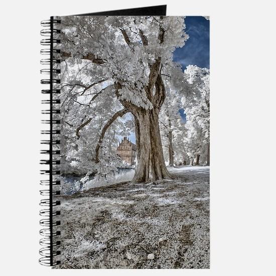 Infrared Creek Journal