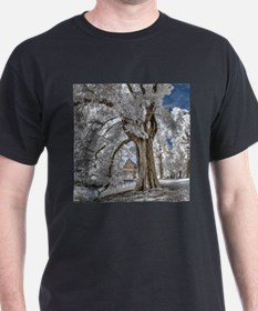 Infrared Creek T-Shirt