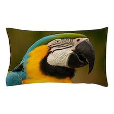 Unique Macaw Pillow Case
