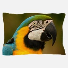 Cute Blue and gold macaw Pillow Case